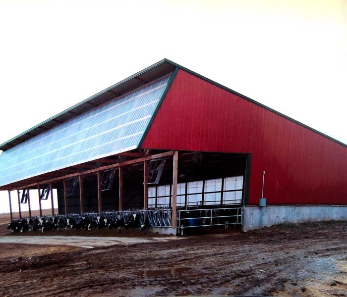 Farm-IMG-4156